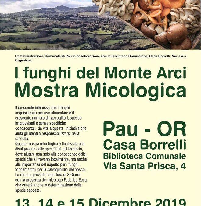 I funghi del Monte Arci. Mostra Micologica, 13 dicembre 2019 Pau.