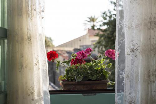 Vista del giardino dalla camera matrimoniale
