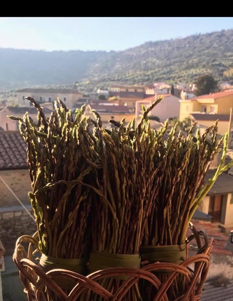 V sagra dell'asparago Gesturi 31 marzo 2019